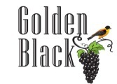 gb logo s